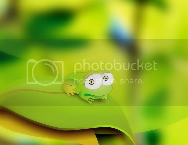 frog cute Pictures, Images and Photos